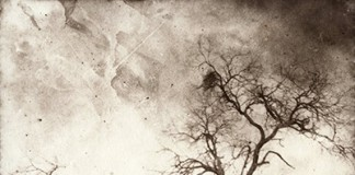 """""""Reclamation"""" by Rick Lanning from """"Collecting Shadows – Works by The Calotype Society."""""""