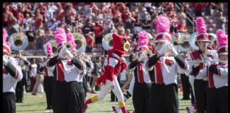Louie makes his way through the marching band during a 2017 football game.
